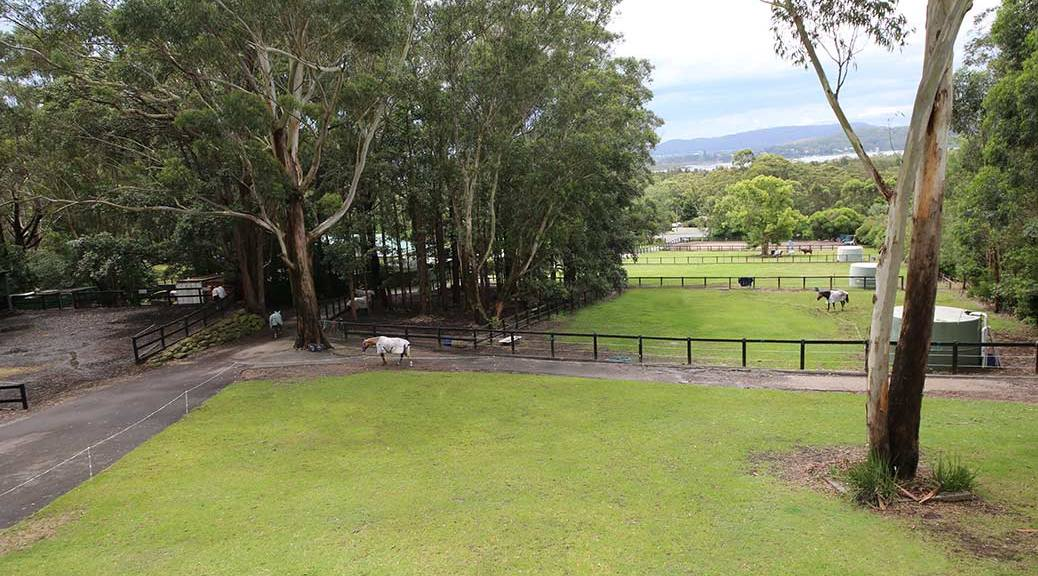 The HorsePower Riding Academy property at Empire Bay on the beautiful Central Coast of New South Wales, as seen from the verandah of the house.