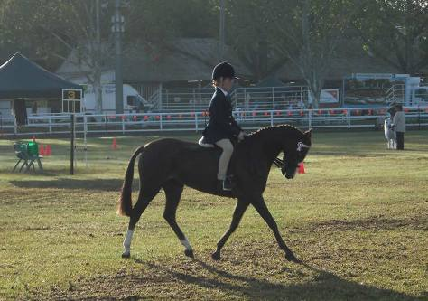 One of Sandie's students competing in a show.