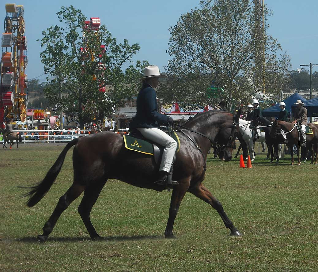 Sandy Gleeson competing in a show a few years ago - she won Overall Champion in this Australian Stockhorse event.