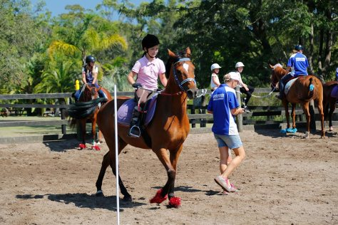 Bending around poles on a bay pony with red tinselled feet