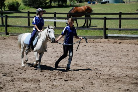 A young competitor leads a young rider on a white pony through the course