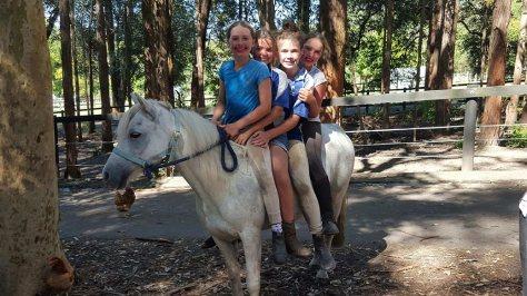 HPRA riders bareback on grey pony, Snowy.