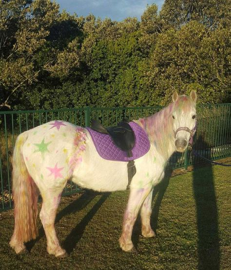 An HPRA pony painted for a child's birthday party