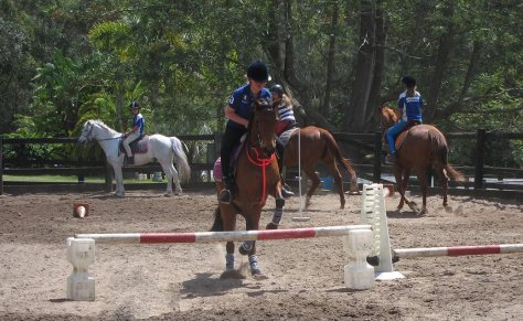 A rider and her pony easily take this low jump while other riders complete the circuit behind her