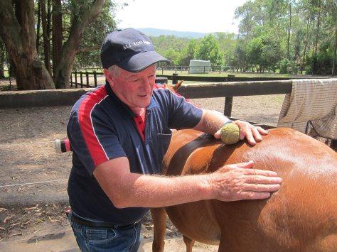 Here, Ken is using a tennis ball to help massage a horse.
