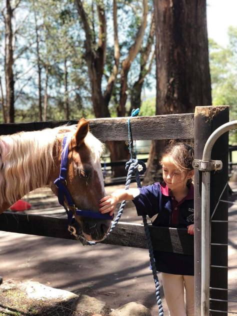 A young rider pats a pony